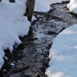 Forest creek, winter — Видео
