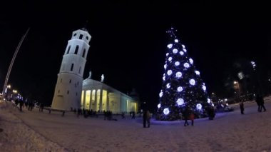 Christmas tree on Cathedral Square, Vilnius, Lithuania — Stock Video