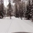 Winter forest road — Stock Video #38602991
