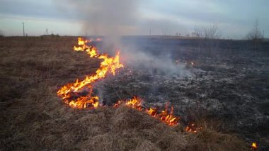 Burning grass — Stock Video