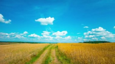 Summer Landscape,  time-lapse — Wideo stockowe