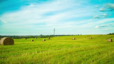 Bale of hay in the field, time-lapse pan — Stock Video