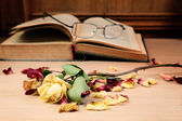 Dry rose and the old book — Stock Photo