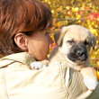 The woman with a puppy in hands against autumn leaves — Stock Photo