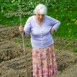 The old woman works in a blossoming garden — Foto Stock