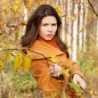 The girl among young birches in the autumn — Stock Photo