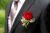 Rose in a buttonhole of the groom close up — Stock Photo