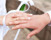 The weaved hands of  bridegroom and  bride — Stock Photo