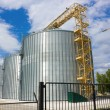 Grain elevator — Stock Photo #18954019