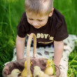 Stock Photo: Child Playing with Chicks