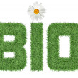 Stock Photo: Text BIO of green grass