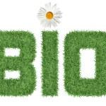 bio texto de grama verde — Foto Stock