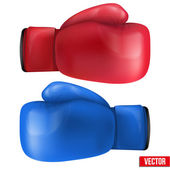Boxing gloves isolated on white background. — Stock Vector