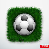 Icon football ball in green grass. Vector. — Vettoriale Stock