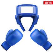 Boxing helmet and gloves. Vector Illustration. — Stock Vector