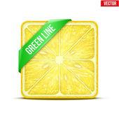 Square slice of lemon Green Line. Vector Illustration. — Stock Vector