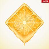 Square slice of orange with fresh juice. Vector Illustration. — Stock Vector