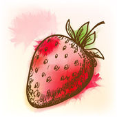 Strawberry, watercolor painting — Stock Vector