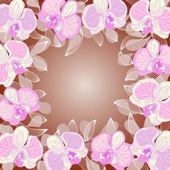 Orchidej rámeček — Stock vektor