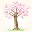 Blooming tree — Stock Vector