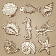 Sea collection. Original hand drawn illustration - Stock Vector