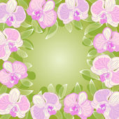 Orchid frame — Stock Vector