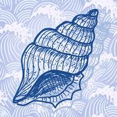 Deniz kabuğu — Stok Vektör