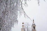 White tree and yellow church — Stock Photo