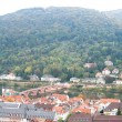 Heidelberg view — Stock Photo