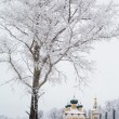 White trees and yellow church — Photo #31151807