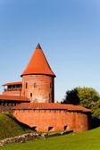 Kaunas castle — Foto de Stock