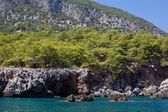 Berg och hav — Stockfoto