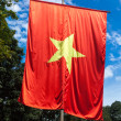 Vietnamese flag - Stock Photo