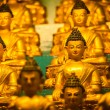 Buddha Sakyamuni statues - Stock Photo