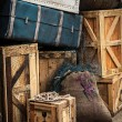 Vintage luggage — Stockfoto #25475637