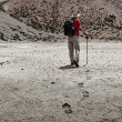 Mountaineer trekker walking in Himalayas - ストック写真