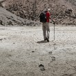 Mountaineer trekker walking in Himalayas - Stock Photo