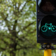 Royalty-Free Stock Photo: Bicycle traffic light in Europe