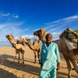 Stock Photo: Cameleer (camel driver) with camels in dunes of Thar desert. Raj