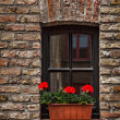 Window with flowers in Europe. Bruges (Brugge), Belgium - Stock Photo