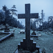 Spooky Halloween graveyard in fog - Stock Photo