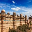 Gwalior fort — Stock Photo #25476321