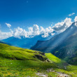 Mountain panorama — Stock Photo #25476327