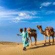 Cameleer (camel driver) with camels in dunes of Thar desert. Raj - Foto Stock