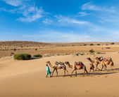 Two cameleers with camels in dunes of Thar deser — Stok fotoğraf