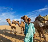 Cameleer (camel driver) with camels in dunes of Thar desert. Raj — Stockfoto