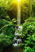 Tropical waterfall — Stock Photo