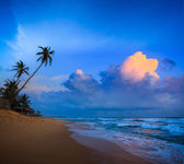Sunset on tropical beach — Stock Photo