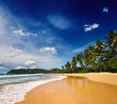 Idyllic beach. Sri Lanka — Stock Photo