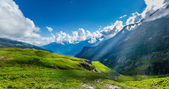 Mountain panorama — Stock Photo